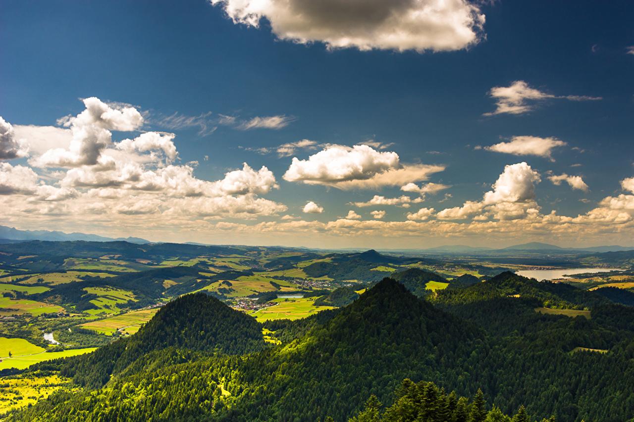 Фото Польша Pieniny гора Природа лес Небо Поля Облака Горы Леса облако облачно