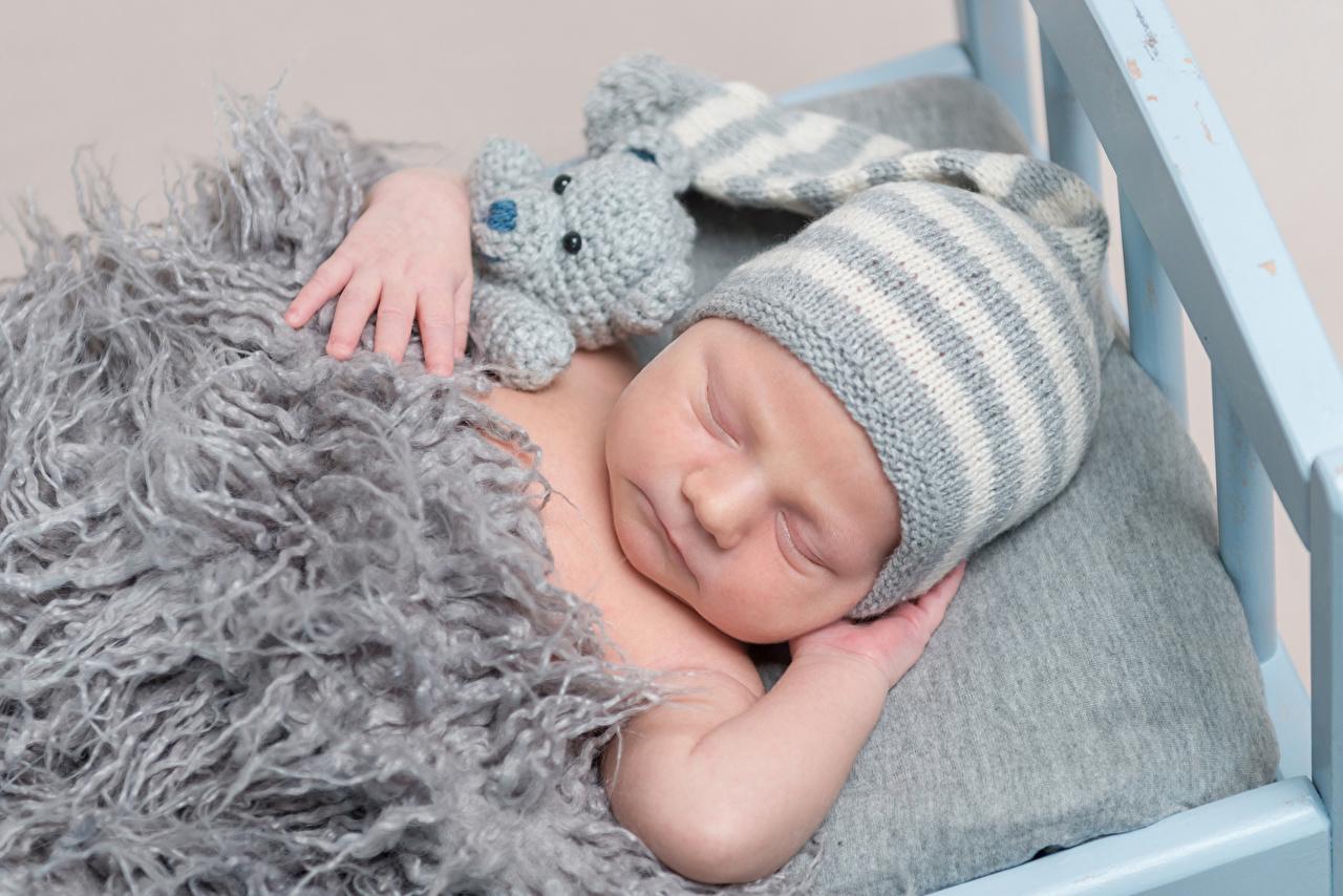 Картинка младенец Дети Спит Шапки Мишки младенца Младенцы грудной ребёнок ребёнок сон спят шапка спящий в шапке Плюшевый мишка