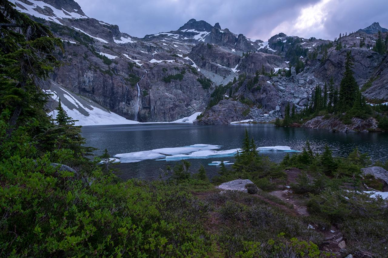 Фото Канада Glacier Lake Ель Горы Природа Снег Озеро