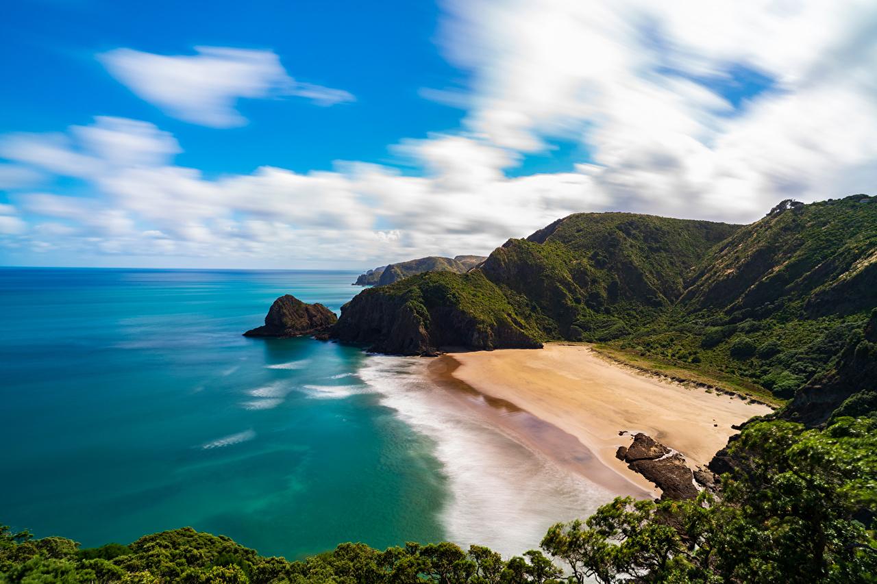 Картинки Новая Зеландия Piha Beach пляже Природа берег облако Пляж пляжа пляжи Побережье Облака облачно