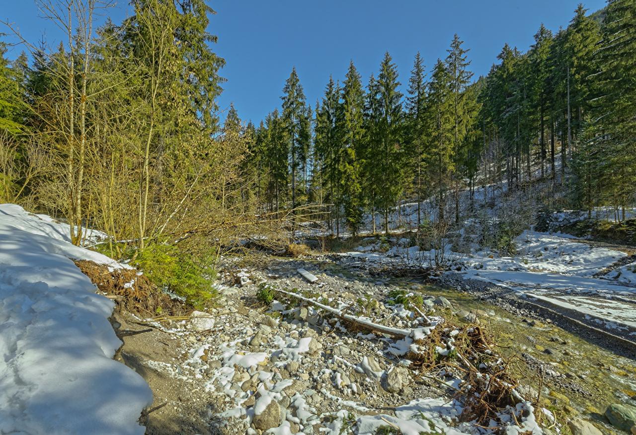 Фото Альпы Австрия Tyrol Ель Зима Природа Снег Леса зимние