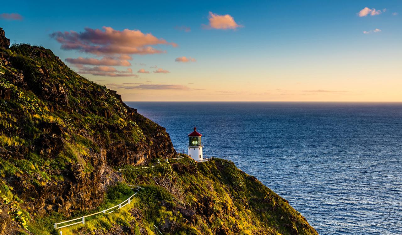 Фотография Гавайи штаты Lighthouse Hike Утес Маяки Природа Мох Побережье США Скала берег