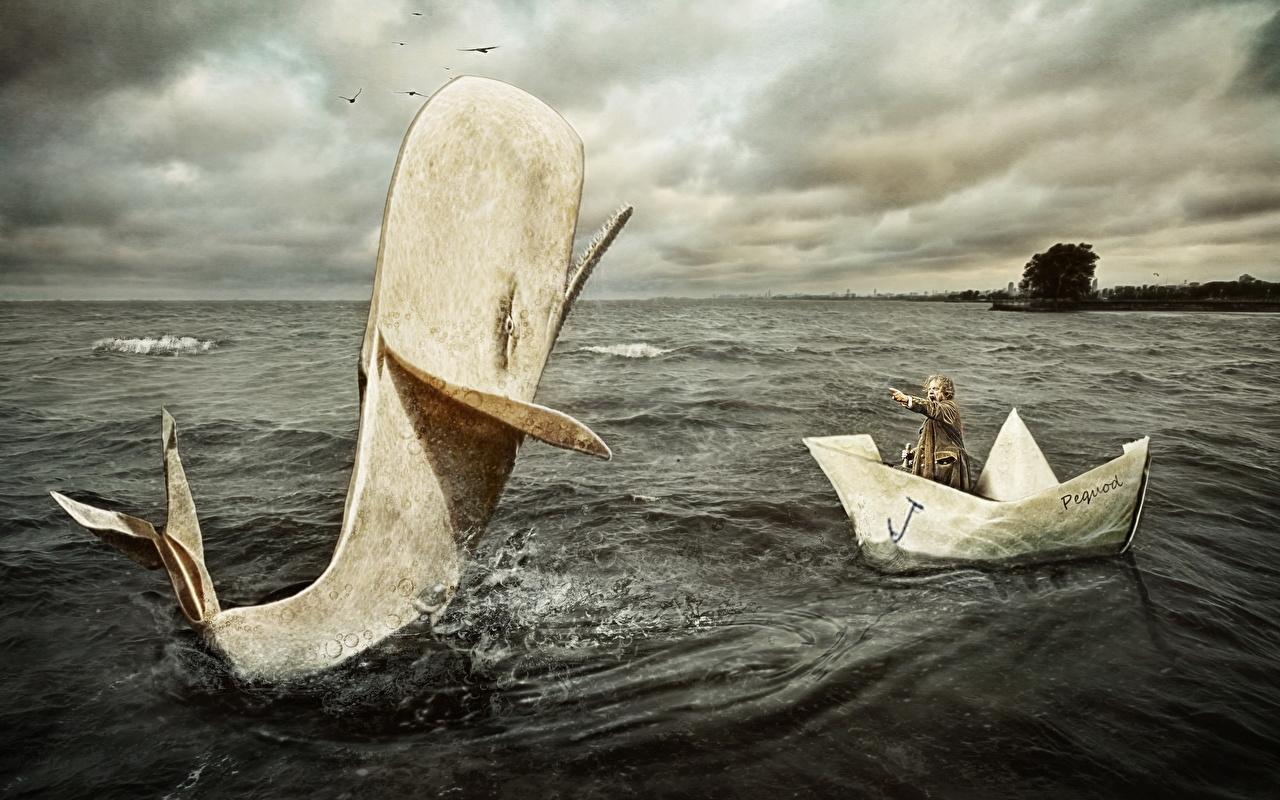 Фотография Смешные Киты Мужчины Море Лодки Юмор мужчина