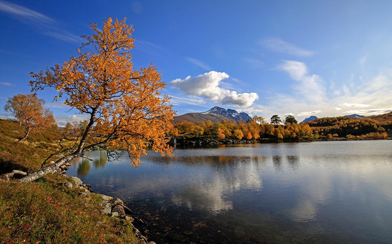 Обои для рабочего стола Норвегия Kilstivatnet Осень Природа Небо Озеро Деревья осенние дерево дерева деревьев