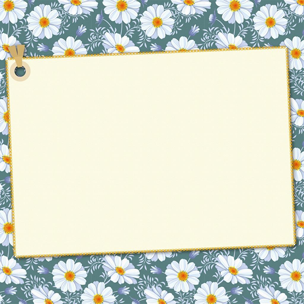 Фотографии бумаги Лист бумаги Шаблон поздравительной открытки бумаге Бумага