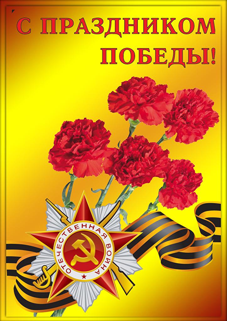 Фото День Победы Звездочки Русские Гвоздики ленточка Праздники  для мобильного телефона 9 мая российские гвоздика Лента