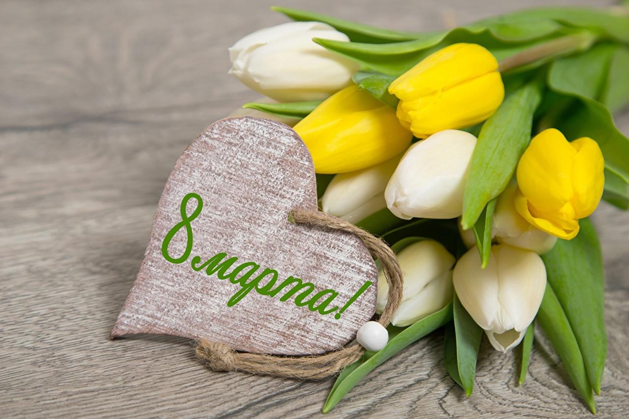 Картинки Международный женский день Сердце Тюльпаны Цветы 8 марта серце сердца сердечко цветок