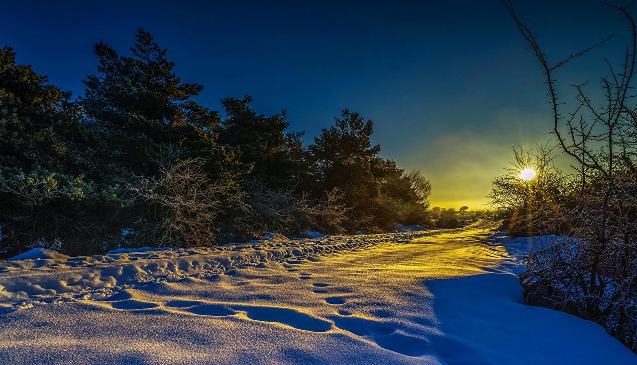Фото Зима Природа лес Снег рассвет и закат зимние Леса снега снегу снеге Рассветы и закаты