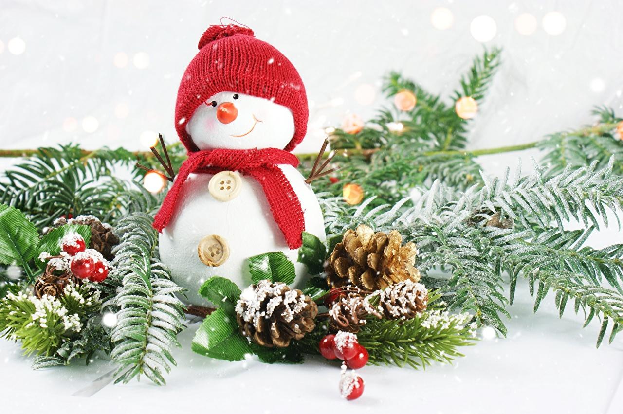 Картинки Шарф Улыбка в шапке Снеговики Шишки Ветки Ягоды шарфе шарфом улыбается Шапки шапка снеговик снеговика шишка ветка ветвь на ветке