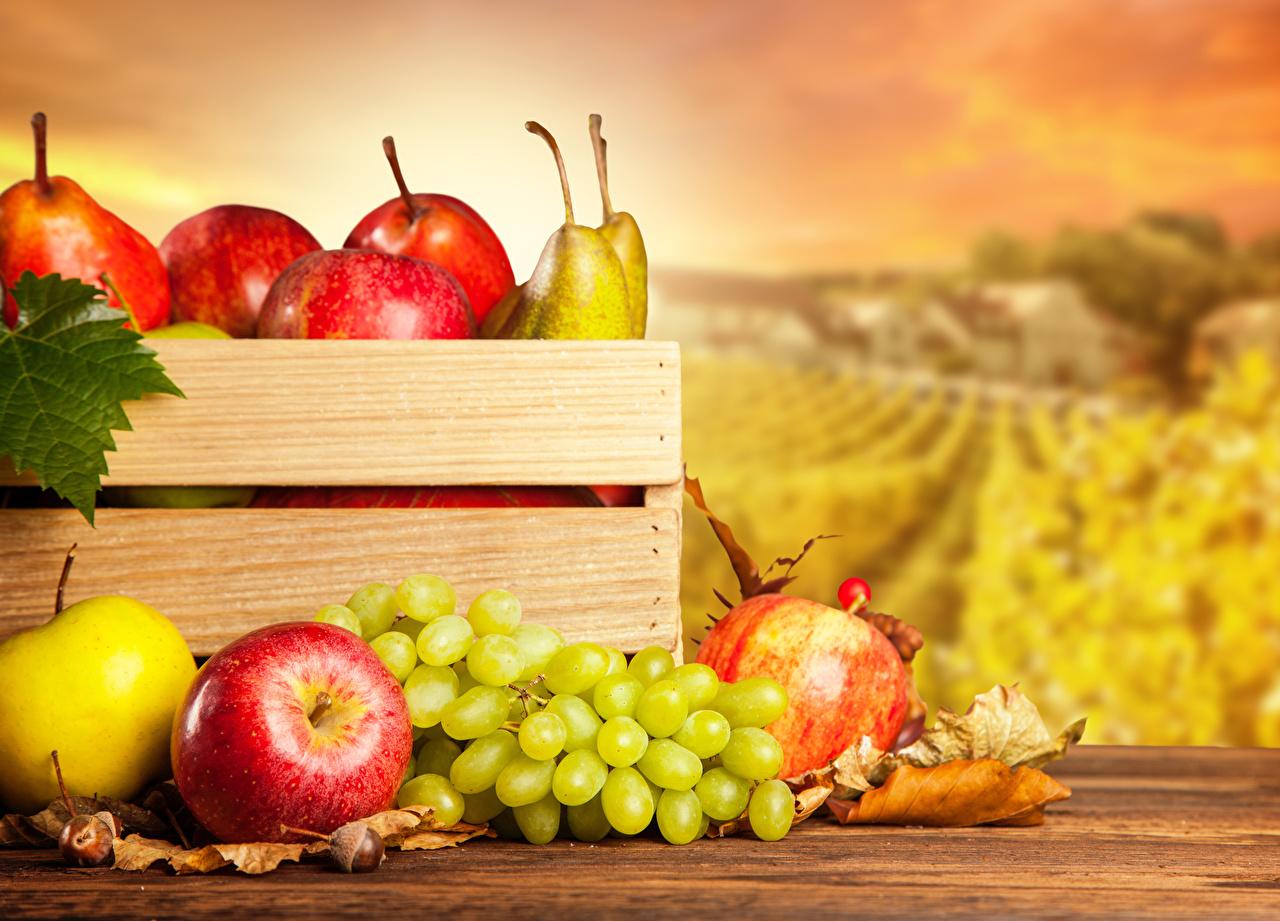 Фото Листья Яблоки Виноград Пища лист Листва Еда Продукты питания