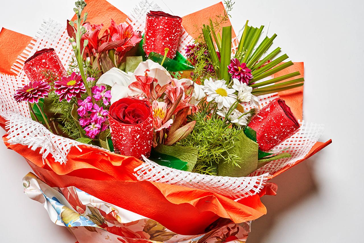 Картинки букет Розы лилия Цветы Левкой ромашка Георгины Серый фон Букеты роза Лилии цветок Ромашки Маттиола сером фоне