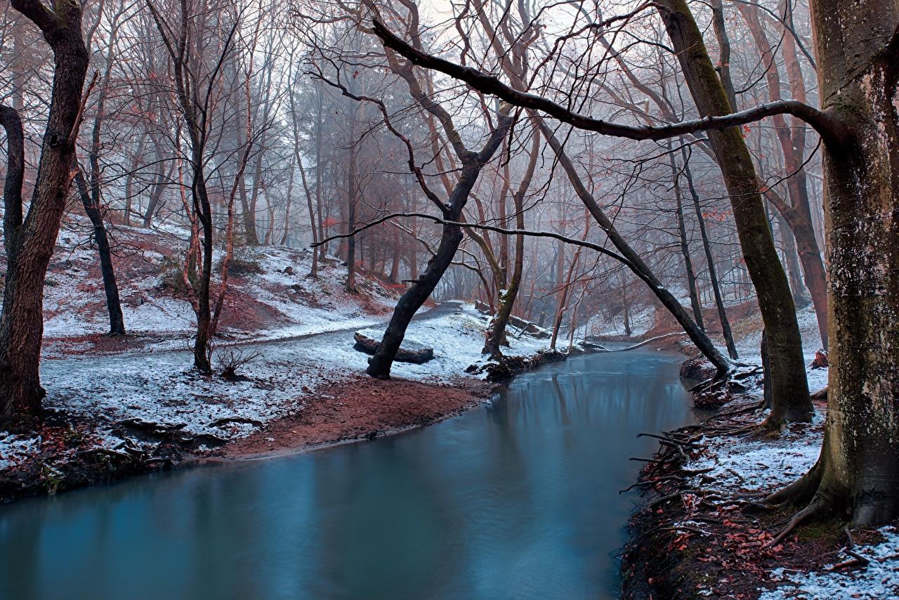 Фотографии тумана зимние Природа Снег Леса Реки Деревья Туман тумане Зима лес снеге снега снегу река речка дерево дерева деревьев