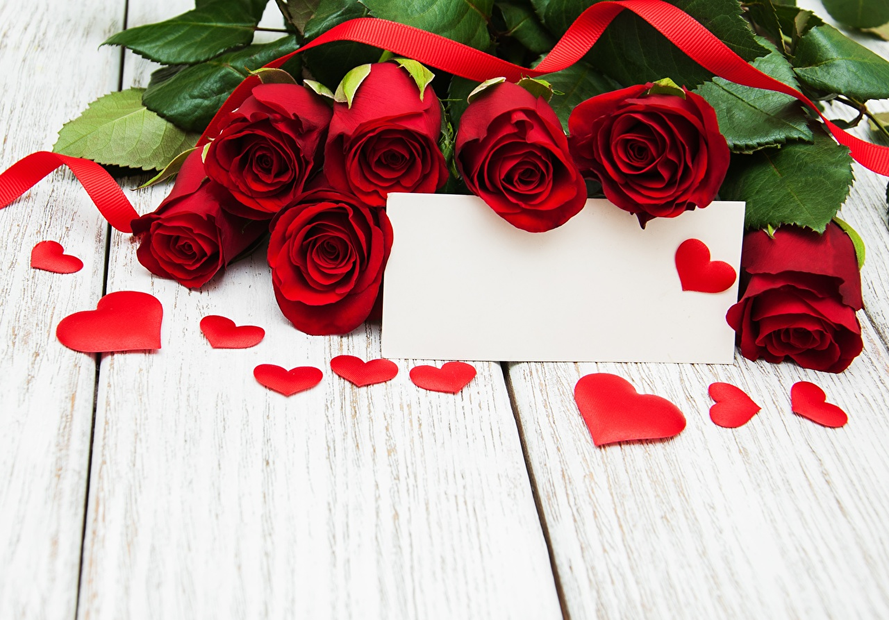 Фото День святого Валентина Сердце Розы цветок Шаблон поздравительной открытки Доски День всех влюблённых серце сердца сердечко роза Цветы
