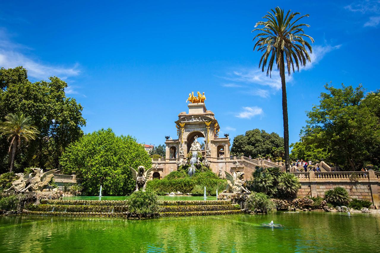 Обои для рабочего стола Барселона Испания Фонтаны Природа Пруд Парки Пальмы Скульптуры парк пальм пальма