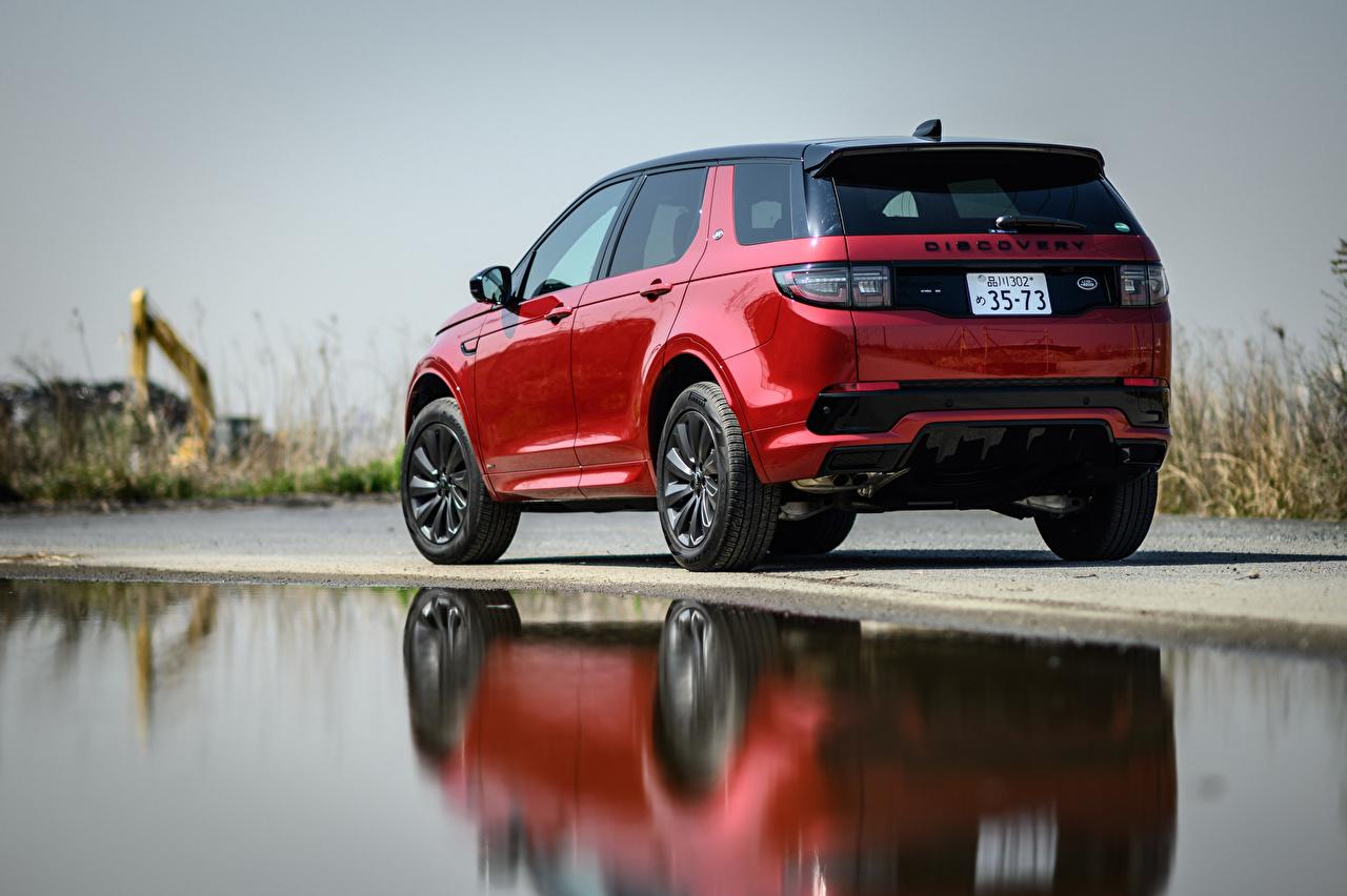 Картинка Range Rover Внедорожник Discovery Sport D180 SE R-Dynamic, JP-spec, L550, 2020 красная Сзади Металлик Автомобили Land Rover SUV Красный красные красных авто машины машина вид сзади автомобиль