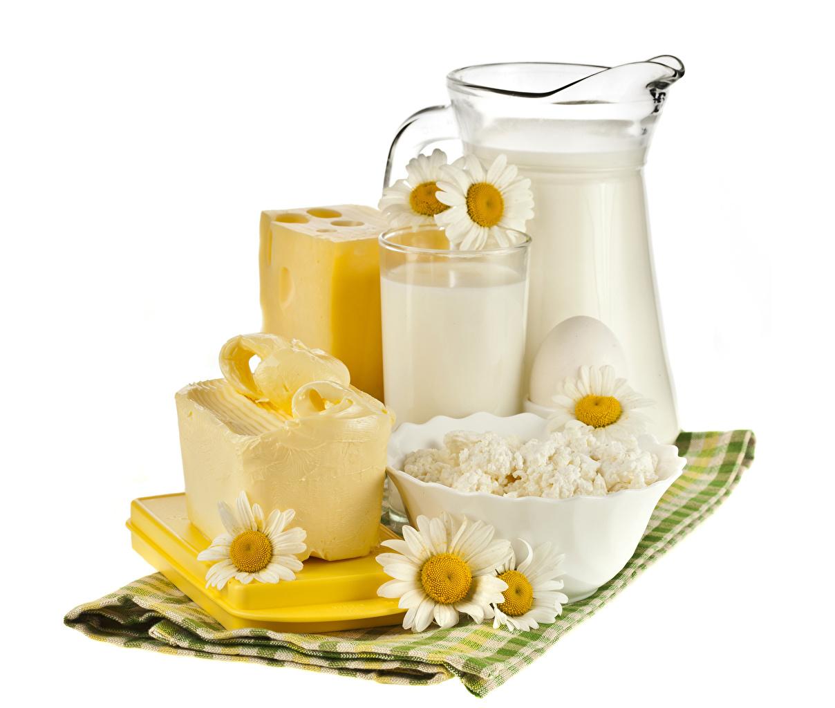 Обои Молоко Масло Творог Сыры Стакан Кувшин Ромашки Еда Белый фон Пища Продукты питания