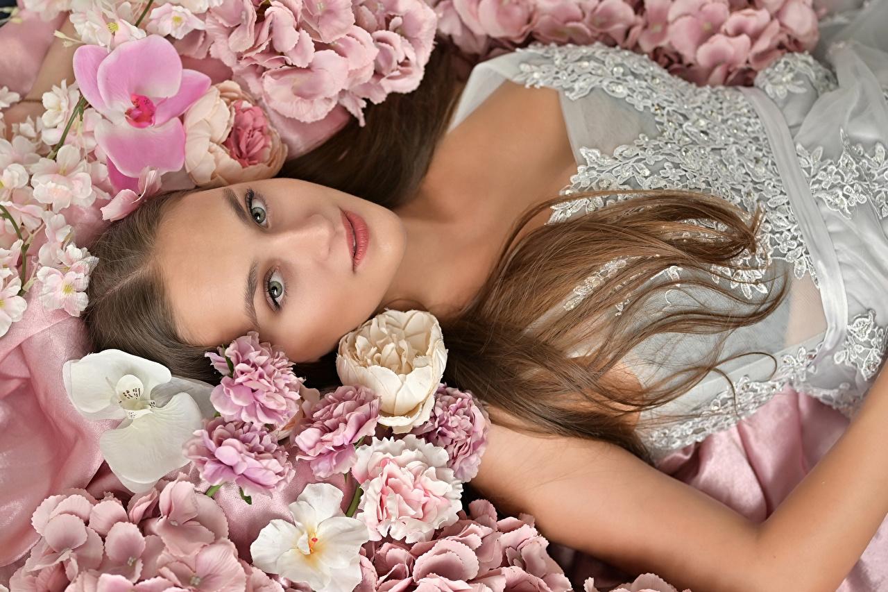Картинки Шатенка орхидея молодые женщины Гвоздики Взгляд шатенки Орхидеи девушка Девушки молодая женщина гвоздика смотрит смотрят