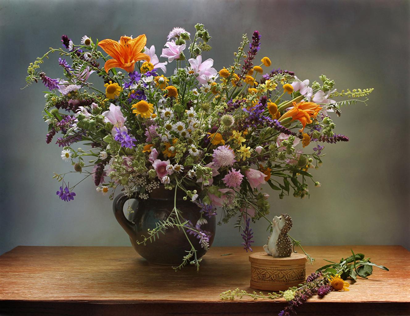 Фото Ежи букет цветок Ромашки вазы Ежики Букеты Цветы ромашка Ваза вазе