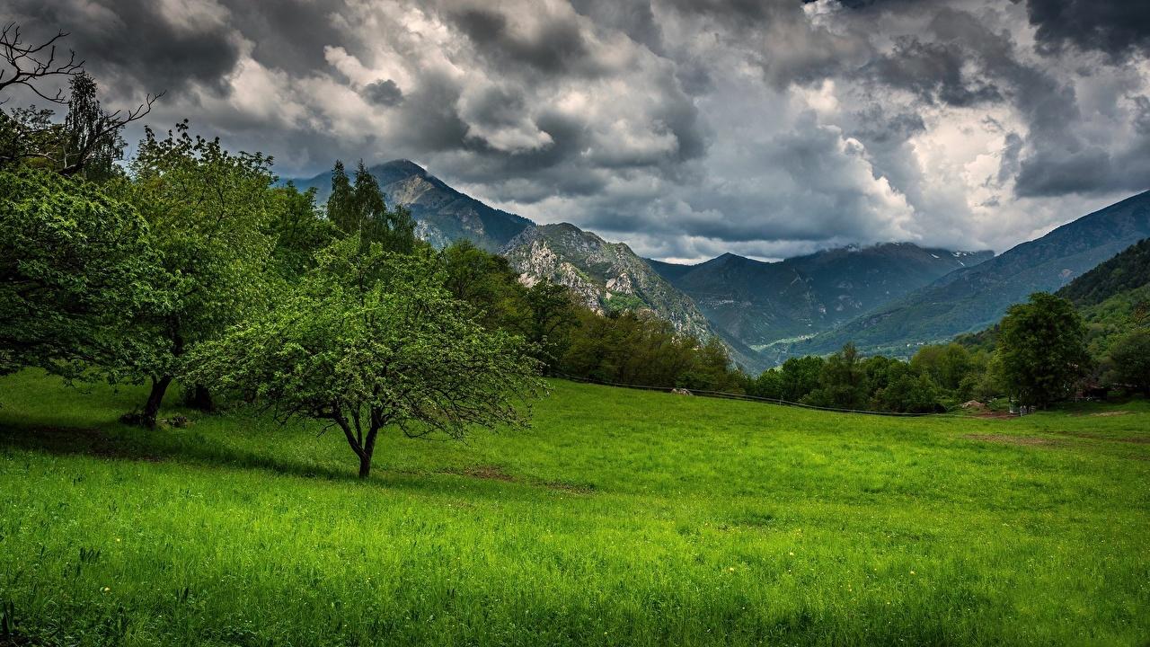 Фотография Прованс Франция гора Природа Трава Деревья Горы траве дерево дерева деревьев