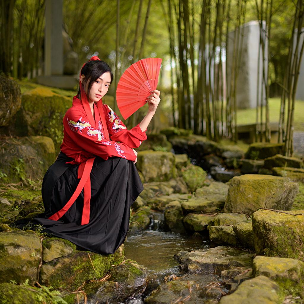 Фотография Веер Кимоно Ручей молодая женщина Азиаты сидя Камень смотрит ручеек девушка Девушки молодые женщины азиатки азиатка Камни Сидит сидящие Взгляд смотрят