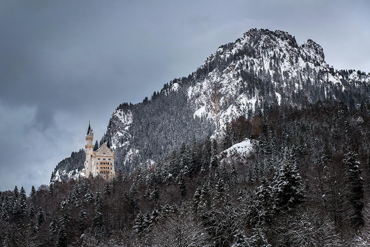 Картинка Бавария Нойшванштайн Германия Горы Замки Природа Леса гора лес
