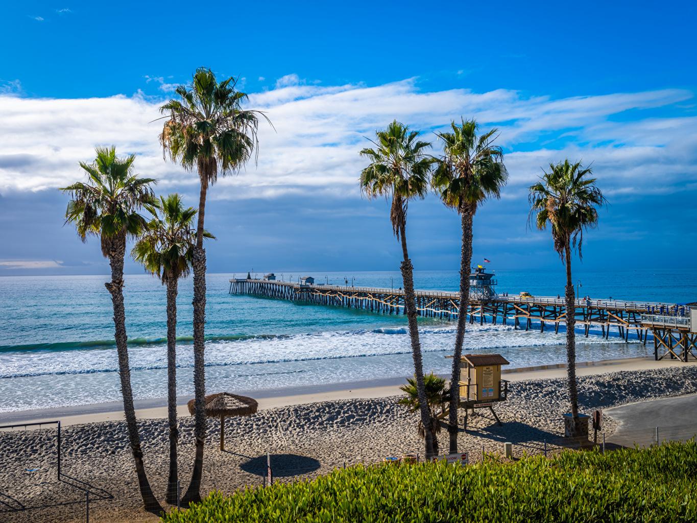 Фотография калифорнии США San Clemente Beach пляжи Океан Природа Пальмы Пристань Побережье Калифорния штаты америка Пляж пляжа пляже пальм пальма берег Пирсы Причалы