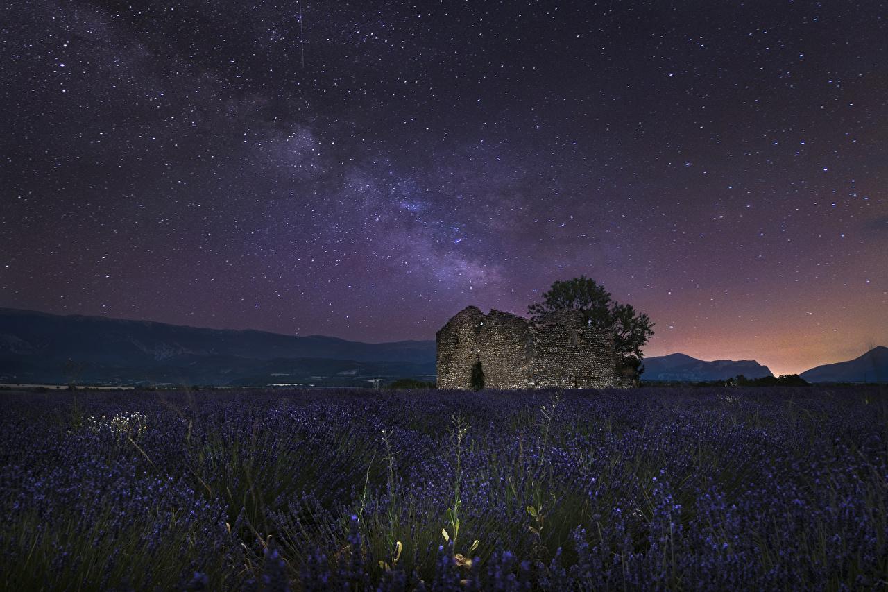 Фотография Звезды Франция Valensole Природа Поля Небо Лаванда Развалины Ночь Руины ночью в ночи Ночные