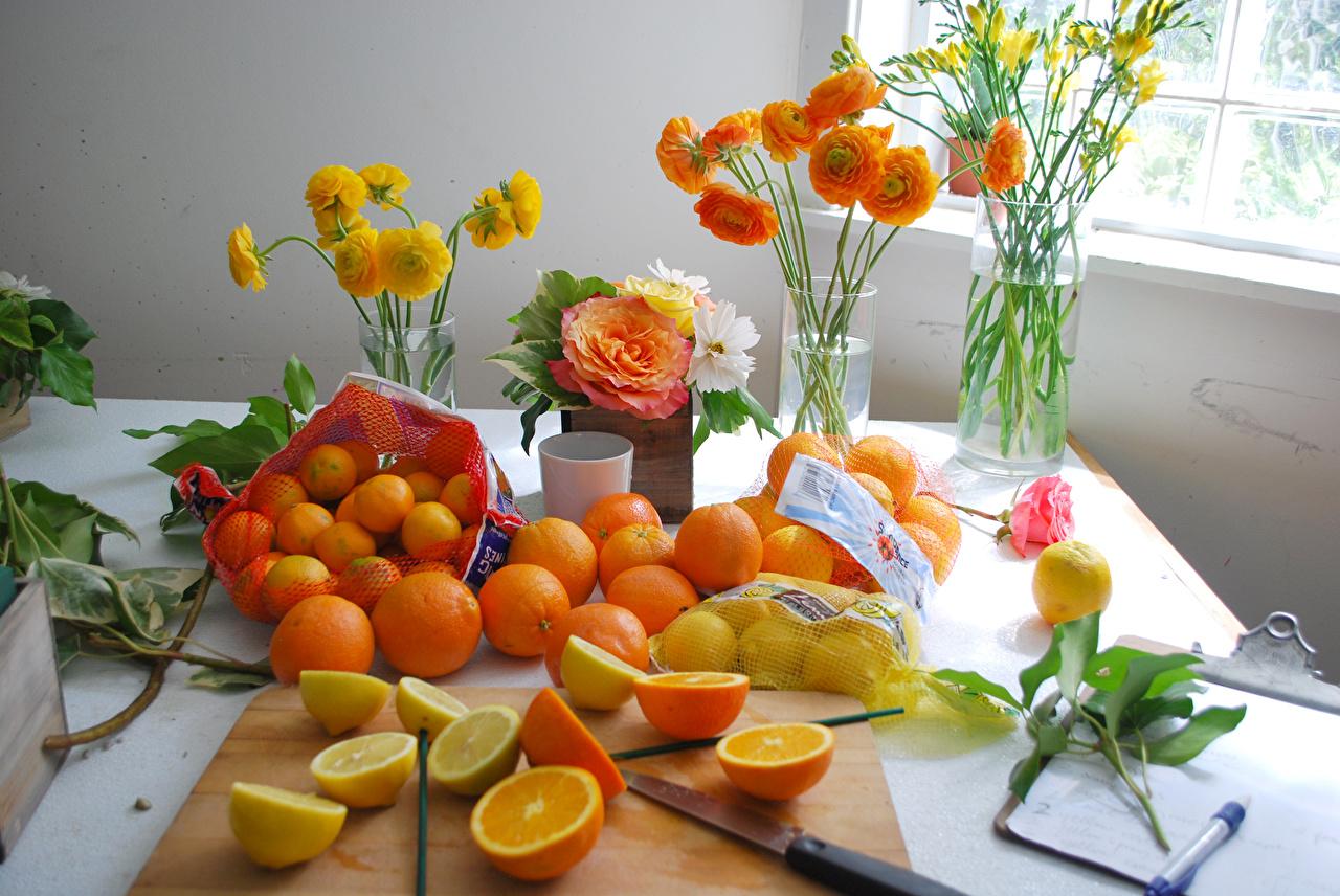 Картинка Розы Апельсин Мандарины Цветы Лютик Лимоны Фрезия Пища Ваза Цитрусовые Еда Продукты питания