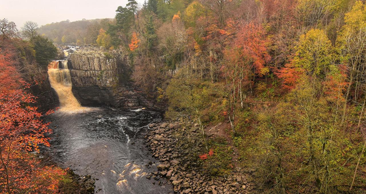 Фотографии Англия Holwick Скала Осень Природа Водопады лес Реки Камень Утес скалы скале осенние Леса река Камни речка