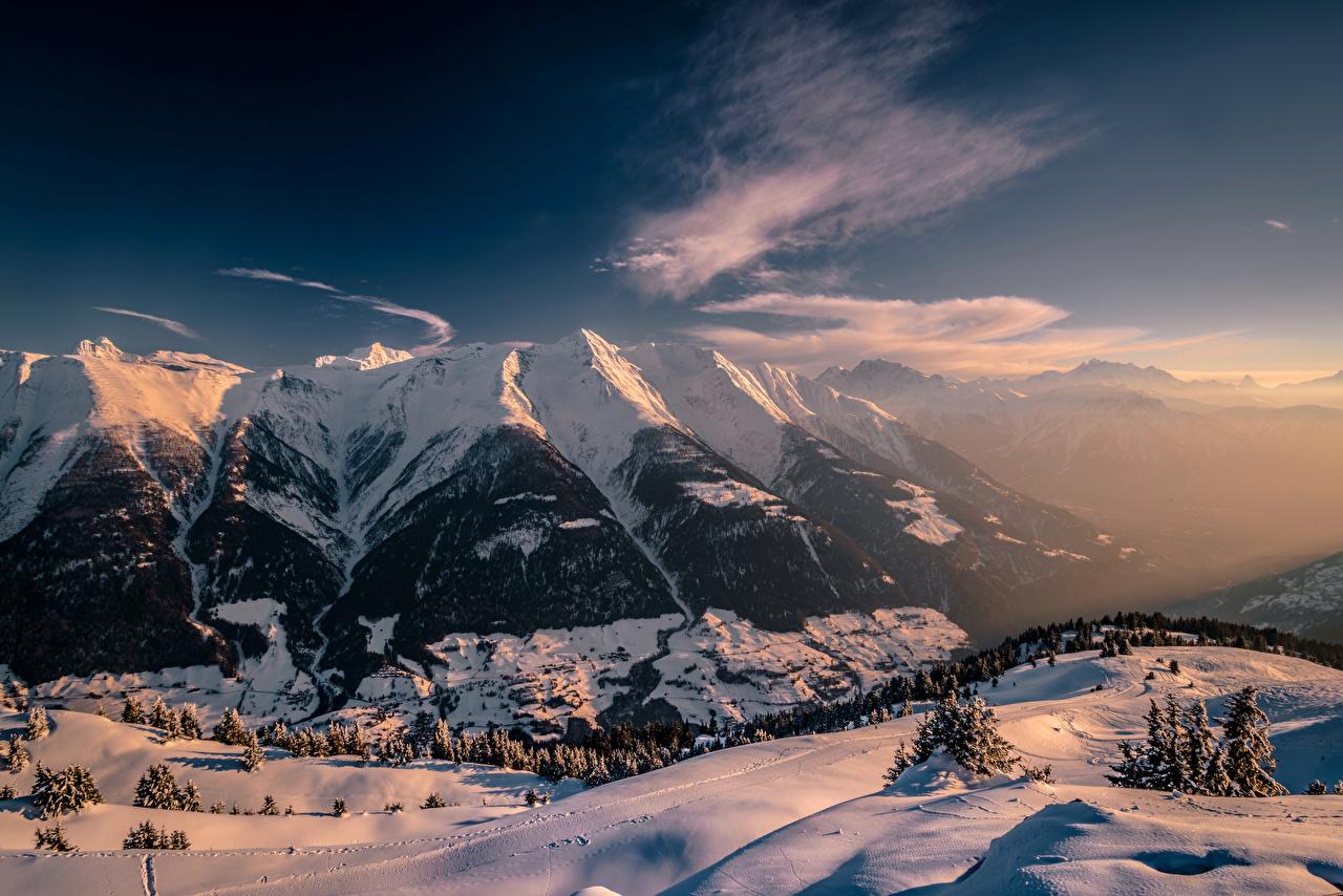 Обои Альпы Швейцария Fiesch Ель Зима Горы Природа Снег зимние