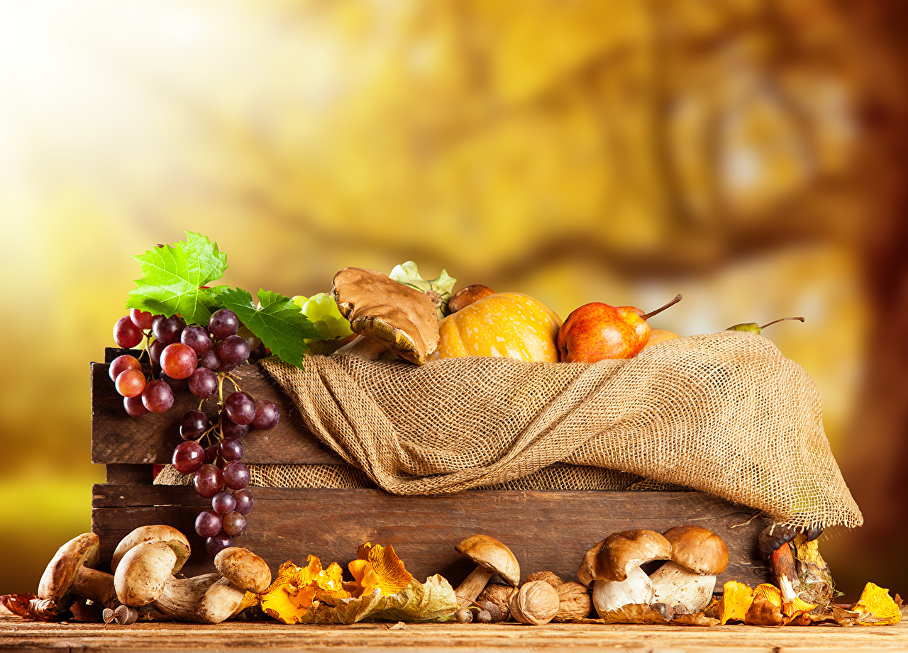 Фото осенние Грибы Груши Виноград Продукты питания Осень Еда Пища