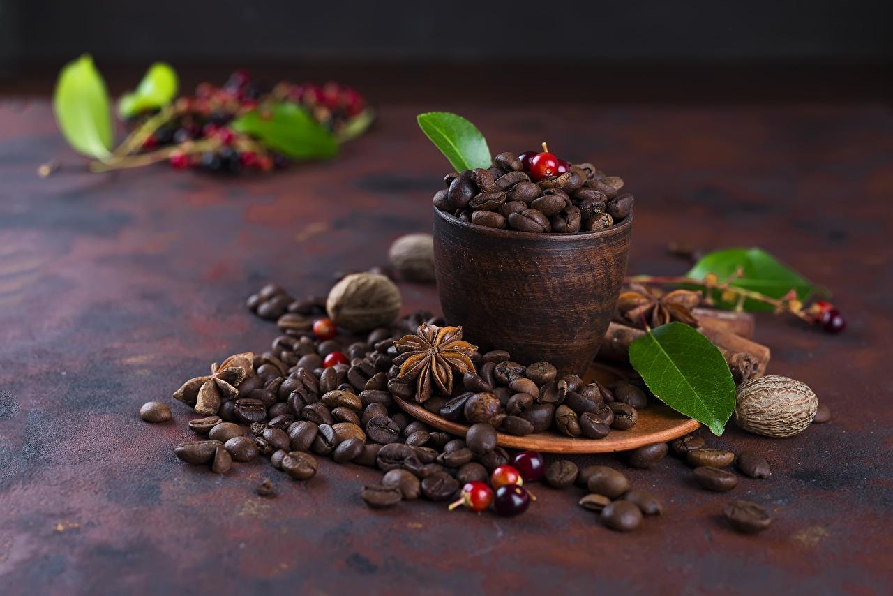 Фотографии Листва Кофе зерно Еда Чашка лист Листья Зерна Пища чашке Продукты питания