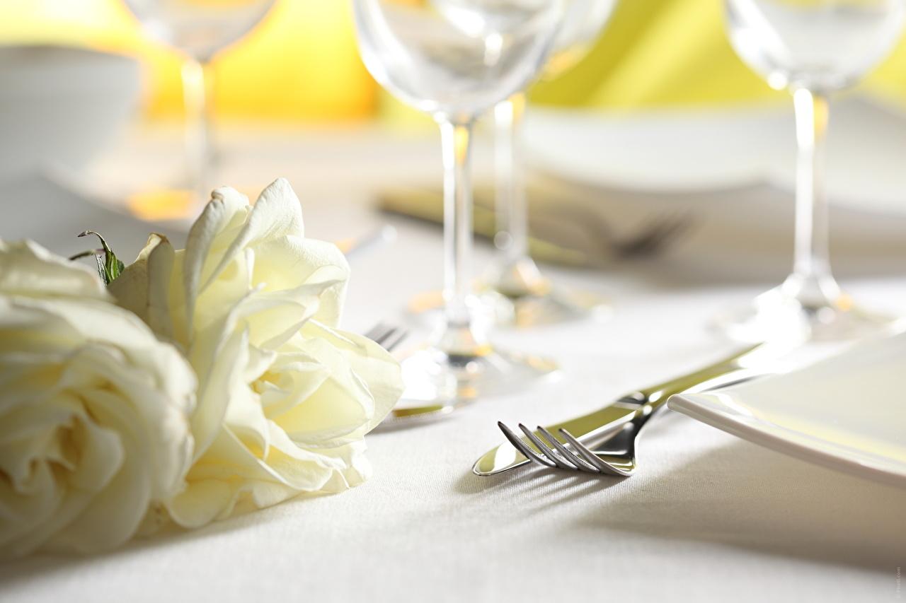Фотографии Розы Цветы Вилка столовая Сервировка роза цветок вилки накрытия стола