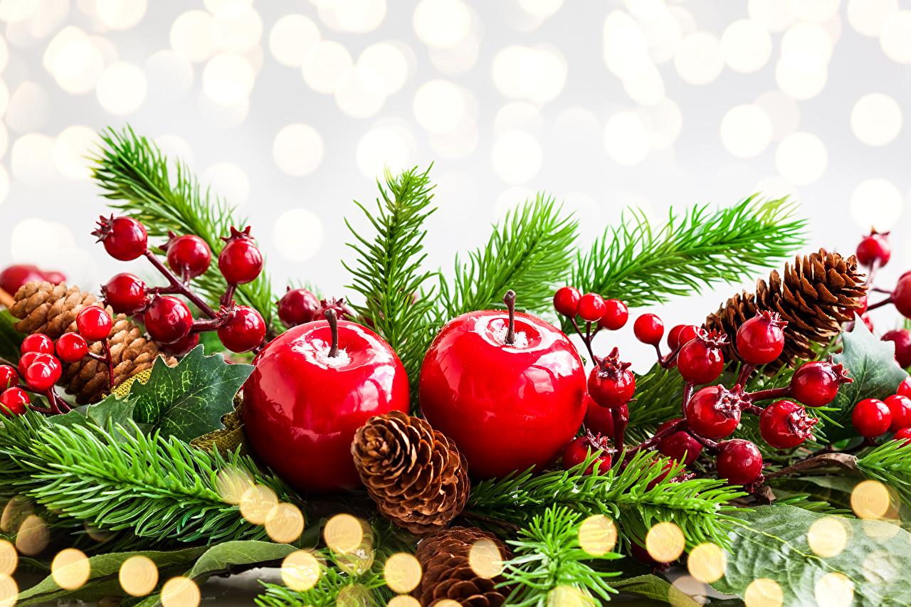 Картинки Новый год Ель Яблоки шишка ветвь Праздники Рождество ели Шишки ветка Ветки на ветке