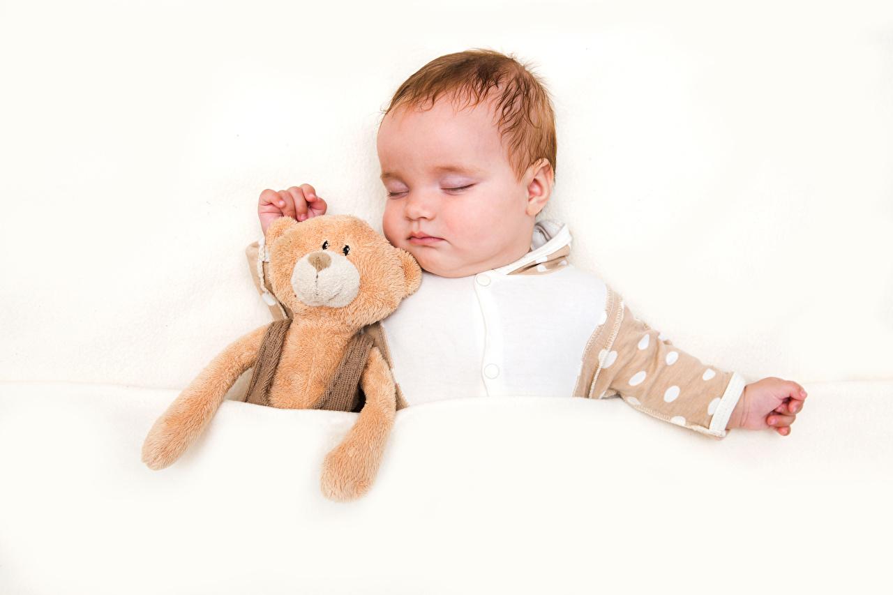 Обои для рабочего стола младенца ребёнок Спит Мишки белом фоне Младенцы младенец грудной ребёнок Дети сон спят спящий Плюшевый мишка Белый фон белым фоном