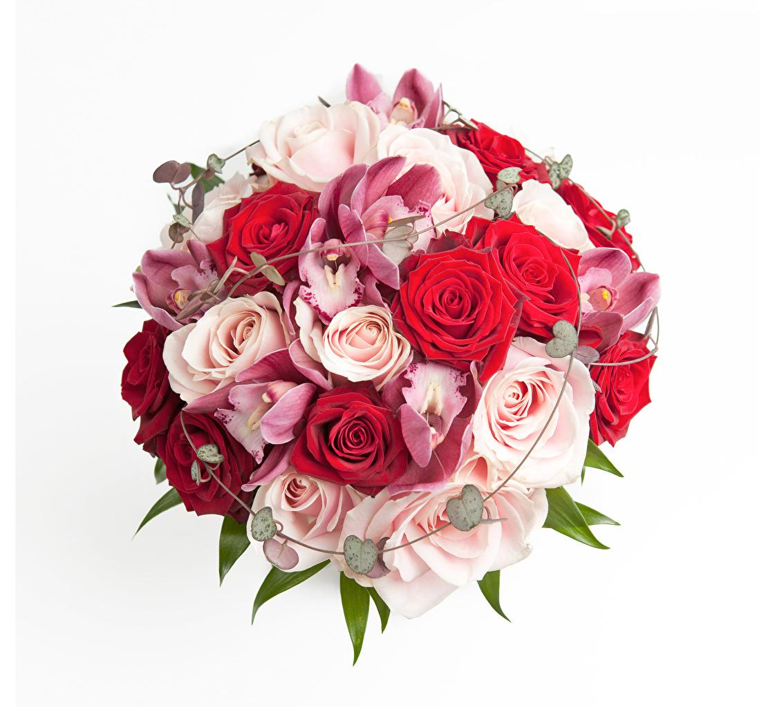 Обои для рабочего стола Букеты Розы Орхидеи цветок белом фоне букет роза орхидея Цветы Белый фон белым фоном
