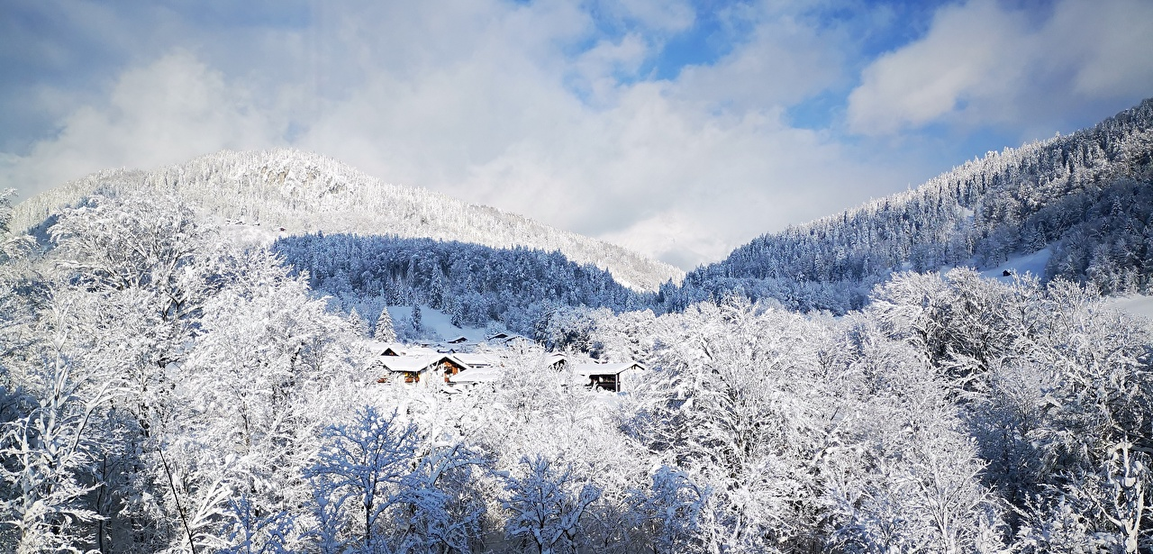 Фотография Германия Berchtesgaden гора зимние Природа лес Снег Пейзаж Горы Зима Леса снеге снега снегу