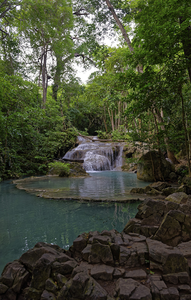 Фотографии Таиланд Erawan Nationalpark Природа Водопады Парки Камень  для мобильного телефона парк Камни