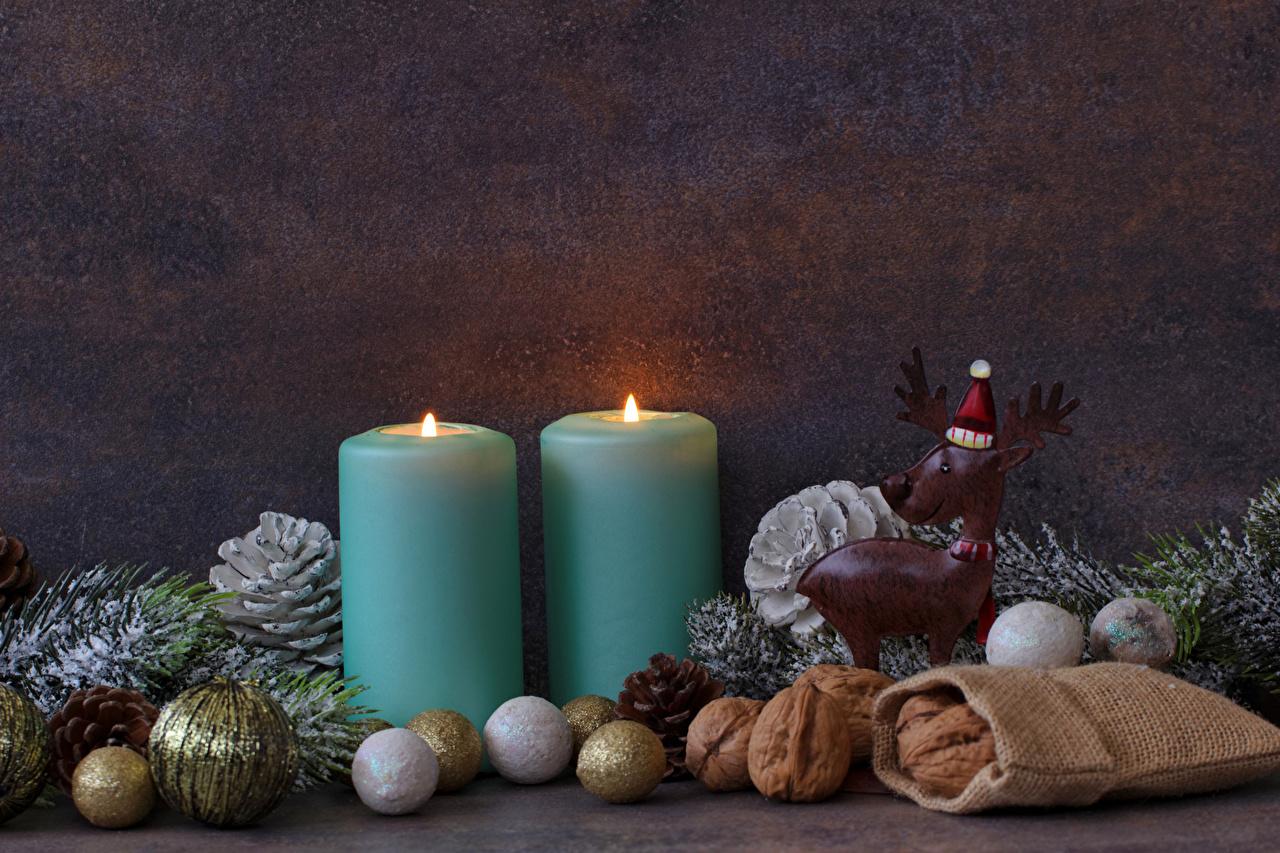 Фотографии Олени Новый год два шапка Свечи Шарики на ветке Орехи Рождество 2 две Двое Шапки вдвоем в шапке Шар ветвь ветка Ветки