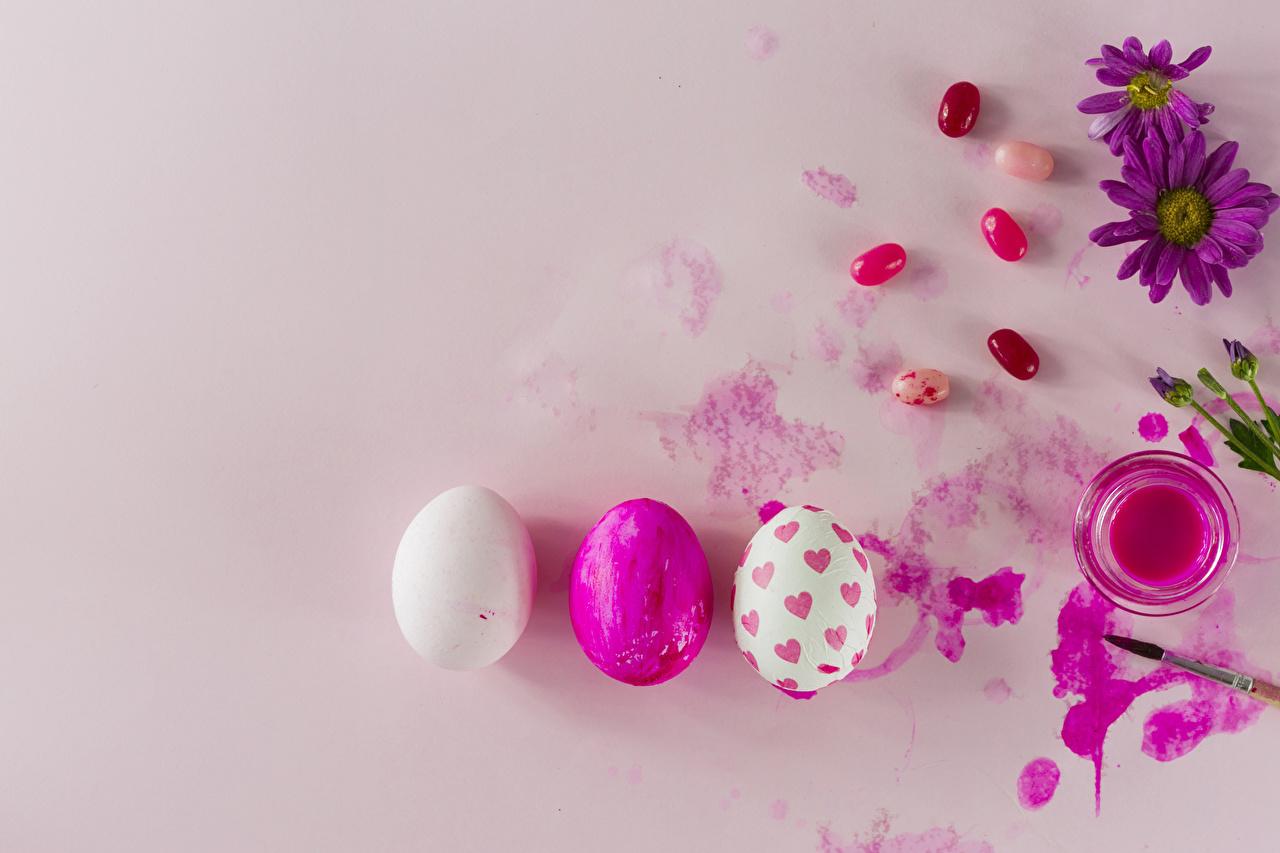 Фотографии Пасха Розовый фон Праздники яйцами яиц яйцо Яйца