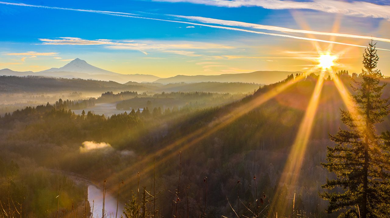 Картинки Лучи света США Sandy Oregon Природа Леса Рассветы и закаты штаты