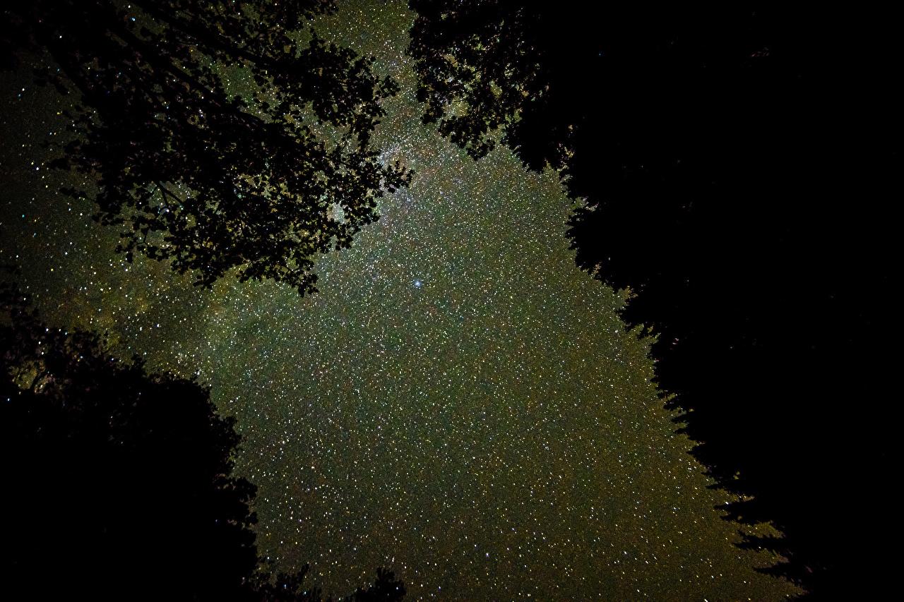 Звёздное небо и космос в картинках - Страница 19 427698-Kycb