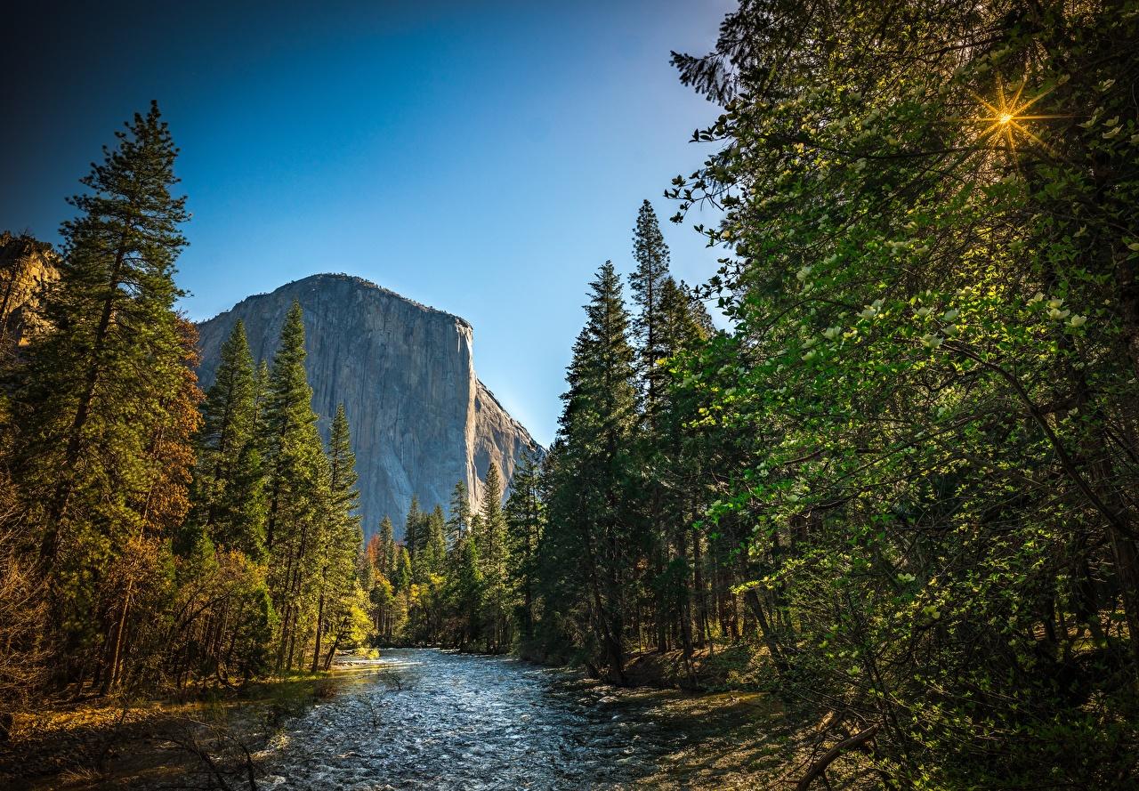 Картинки Йосемити калифорнии США El Capitan Горы Природа лес парк Реки Калифорния штаты америка гора Леса Парки река речка