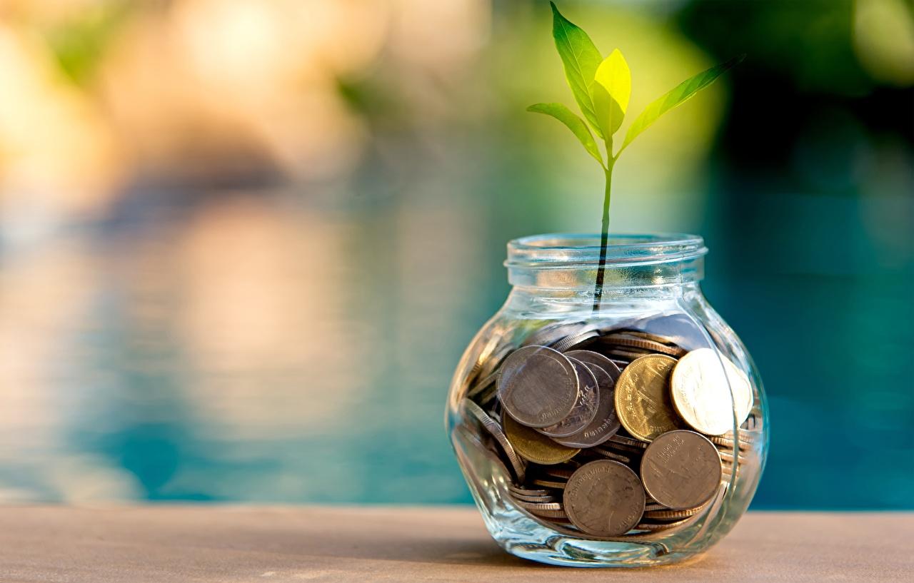 Картинки Монеты Банка Растения банки банке