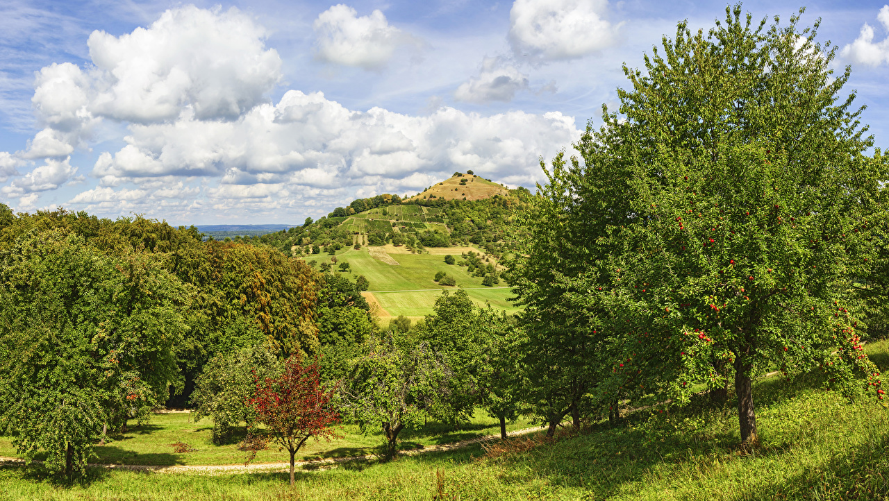Фото Германия Hepsisau Природа Поля Небо Холмы Облака Деревья холм холмов облако дерево дерева облачно деревьев
