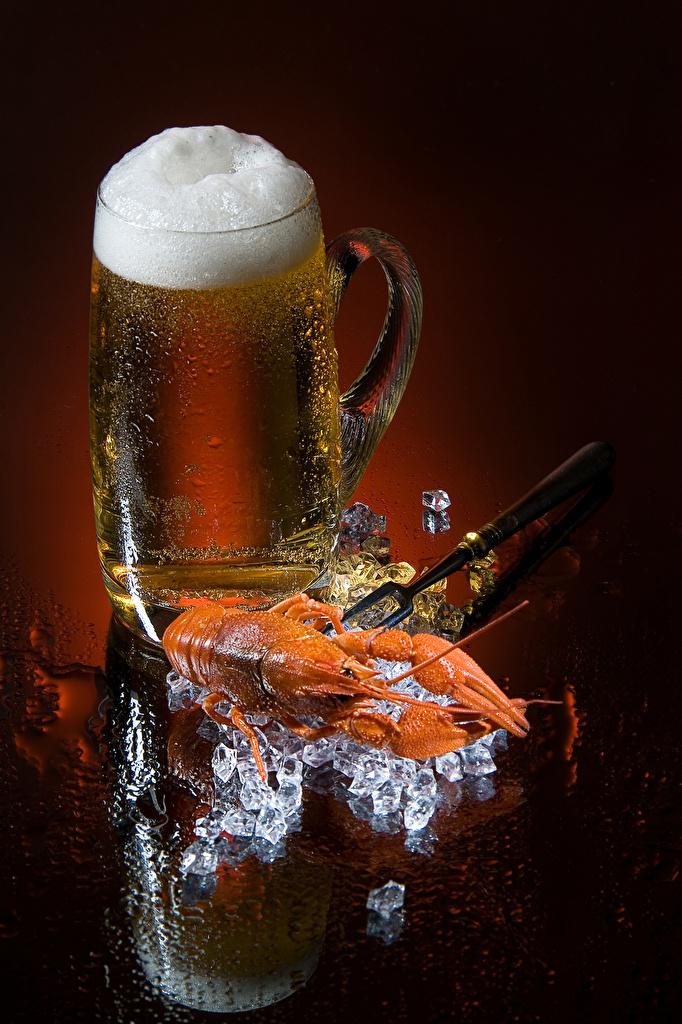 Фотографии льда Пиво Раки Пища пене Кружка Цветной фон Лед Еда Пена пеной кружки кружке Продукты питания
