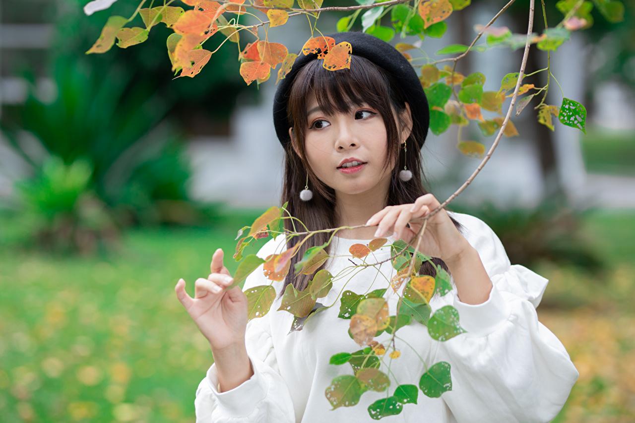 Картинки Размытый фон Берет молодые женщины азиатка рука Ветки Взгляд боке девушка Девушки молодая женщина Азиаты азиатки Руки ветвь ветка на ветке смотрит смотрят