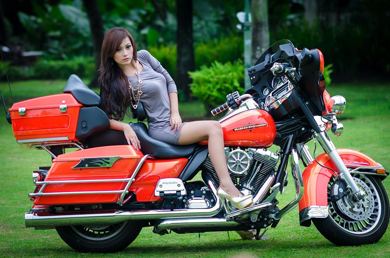 Картинка Xарлей дэвидсон Девушки Мотоциклы Азиаты Harley-Davidson