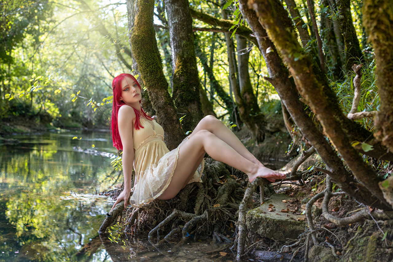 Картинка Lana позирует Девушки ног Сидит Деревья платья Поза девушка молодая женщина молодые женщины Ноги сидя сидящие дерево дерева деревьев Платье