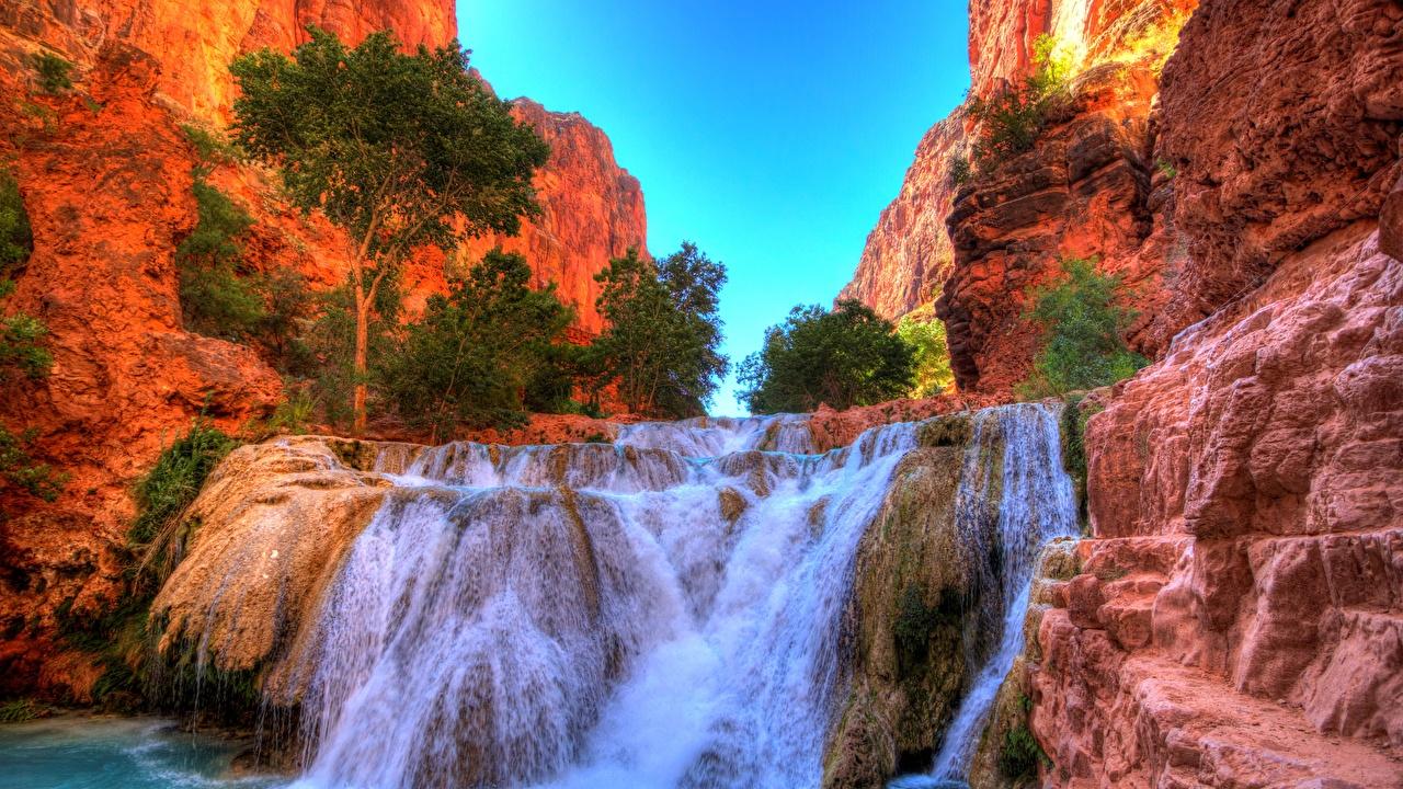 Фото США Grand Falls, Arizona, Little Colorado River скалы Природа Водопады деревьев штаты америка Утес скале Скала дерево дерева Деревья